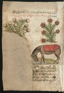 Berlin, SBB Ms Or Fol 2195, fol. 3r